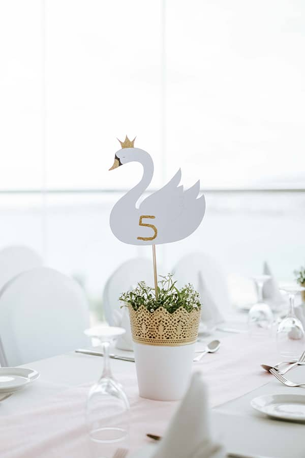 amazing-baptism-royal-swan-theme_17